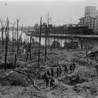 Bundesarchiv Bild 183 2008 0513 500, Danzig, Westerplatte, Wald