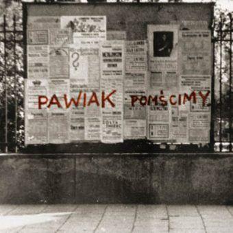 Najpierw słowa, potem czyny. Żądza zemsty na niemieckich oprawcach z Pawiaka był ogromna. W 1943 r. Armia Krajowa przystąpiła do likwidacji najgorszych z nich.