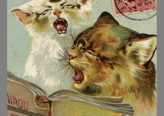 Wbrew pozorom związek frazeologiczny kocia muzyka nie ma nic wspólnego z dźwiękami wydawanymi przez harcujące koty. Na ilustracji fragment XIX-wiecznej francuskiej pocztówki z muzykalnymi kotami.