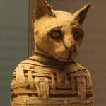 Kocia mumia ze zbiorów British Museum (fot. Magnus Manske, lic. CC ASA 2,0).