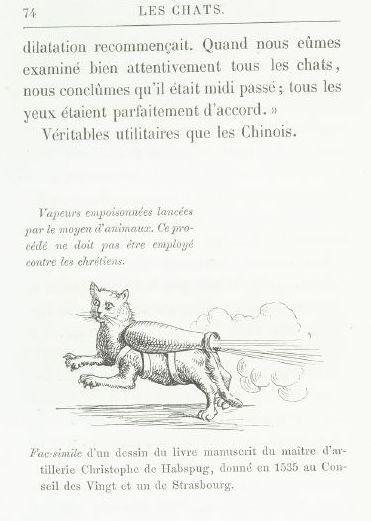 """Jedna ze stron książki """"Les Chats"""" autorstwa Julesa Champfleury'ego. Widać na niej kota wykorzystywanego do przenoszenia broni biologicznej (źródło: domena publiczna)."""