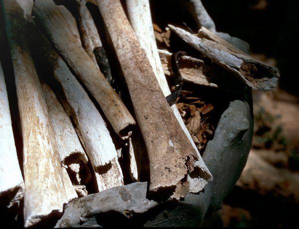 Kości ofiar wykopanych na polach śmierci (fot. Oliver Spalt, CC BY-SA 2.5).
