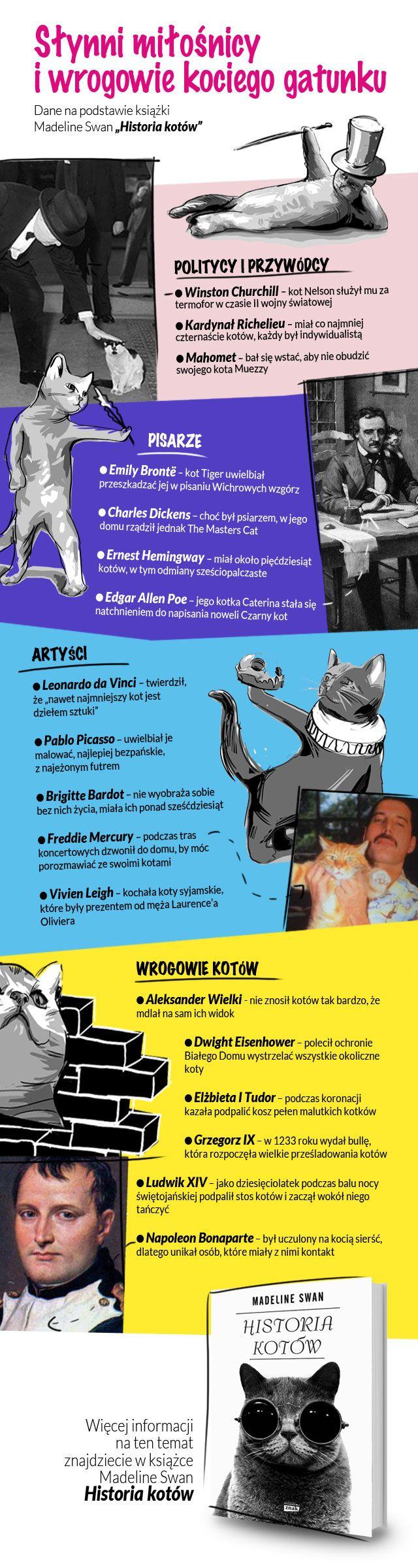 info-koty