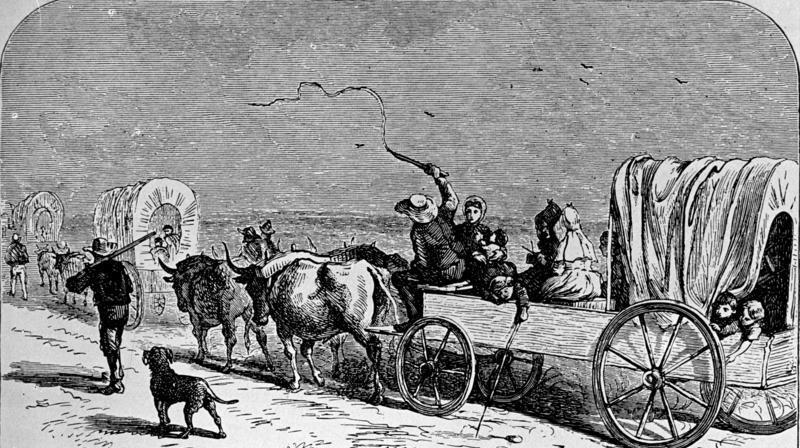 Niemieccy osadnicy w drodze do osady Neu Branunfels w Teksasie w 1844 roku. Wędrujący 10 lat później Ślązacy nie mieli tak wygodnie... (fot. Bundesarchiv, Bild 137-005007, lic. CC-BY-SA 3.0 de).
