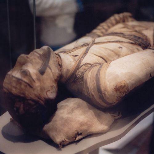 Ta mumia przetrwała czas szalonych maści na stłuczenia (fot. Klafubra, lic. CC BY-SA 3.0).