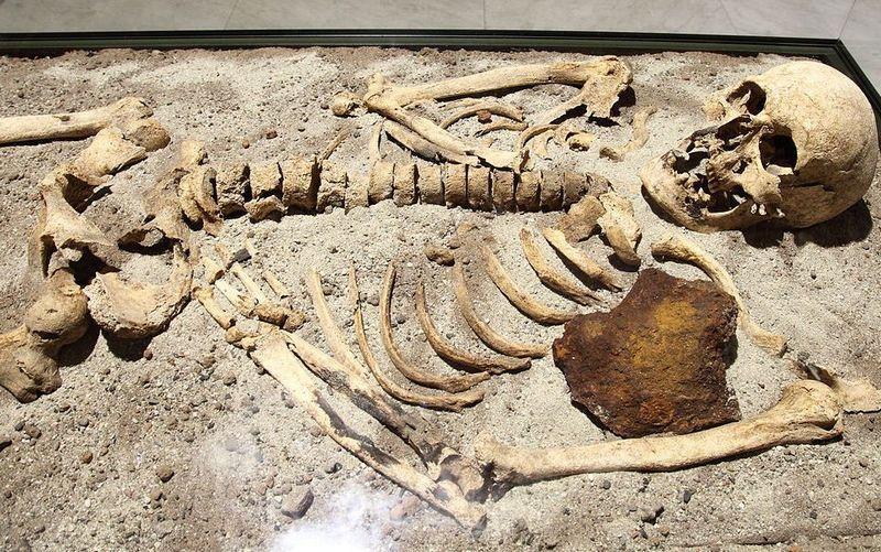 Żelazny pręt w serce. Sprawdzony sposób na wampiry. Na zdjęciu 800-letni pochówek wampiryczny z Bułgarii (fot. Bin im Garten; lic. CC ASA 3.0).