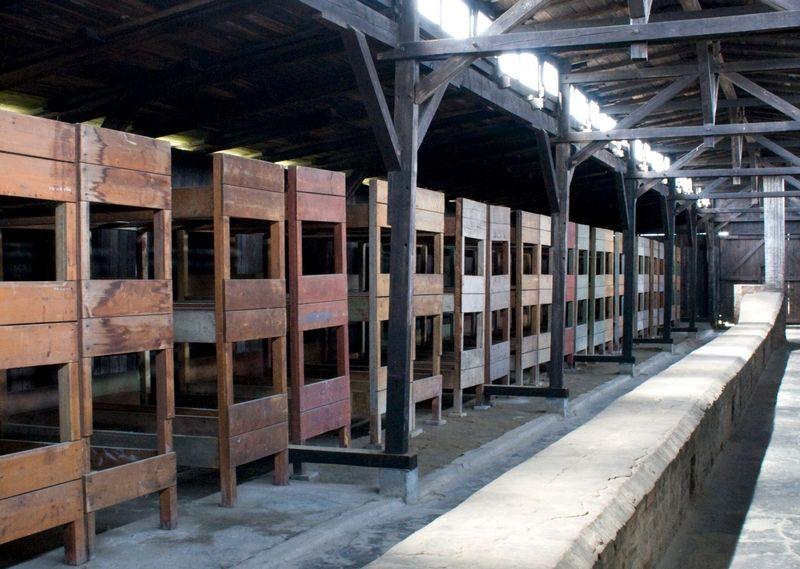 W takich spartańskich warunkach mieszkali więźniowie. Nic zatem dziwnego, że dobra organizacja była podstawą przeżycia w Auschwitz-Birkenau (fot. Ealdgyth; lic. CC BY-SA 3.0).