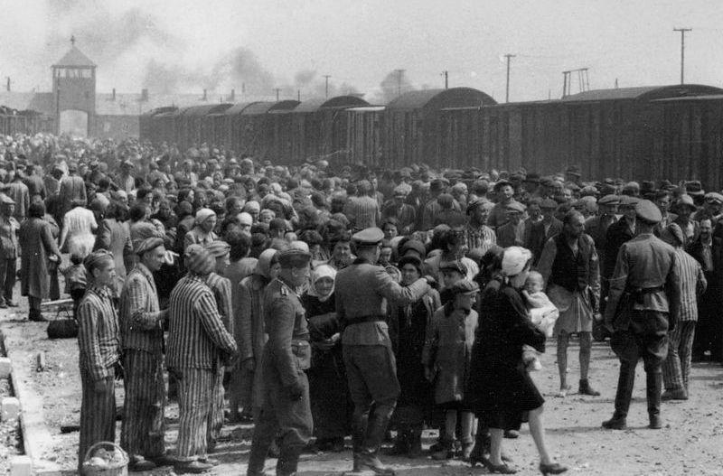 """Aby mieć szanse na przetrwanie, już w pierwszych dniach pobytu w obozie należało wypracować """"szósty zmysł, wykrywający zagrożenie"""". Na zdjęciu selekcja nowo przybyłych więźniów do obozu w Birkenau (źródło: domena publiczna)."""