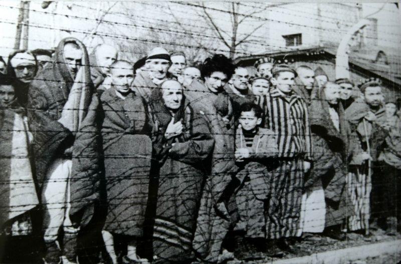 Szanse na przeżycie w Auschwitz rosły jeżeli słuchało się więźniów z dłuższym stażem. Na zdjęciu więźniowie obozu wyzwoleni przez Armię Czerwoną w styczniu 1945 roku (źródło: domena publiczna).