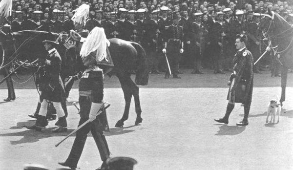 Caesar, nie oglądaj się za królami, tylko pędź do trumny! (pocztówka z 1910 roku, źródło: domena publiczna).