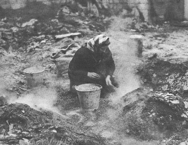 Belgijska kobieta zbiera ziarno w zniszczonej stodole. Być może w budynku chronili się wcześniej amerykańscy żołnierze (fot. US Army Center for Military History, domena publiczna).