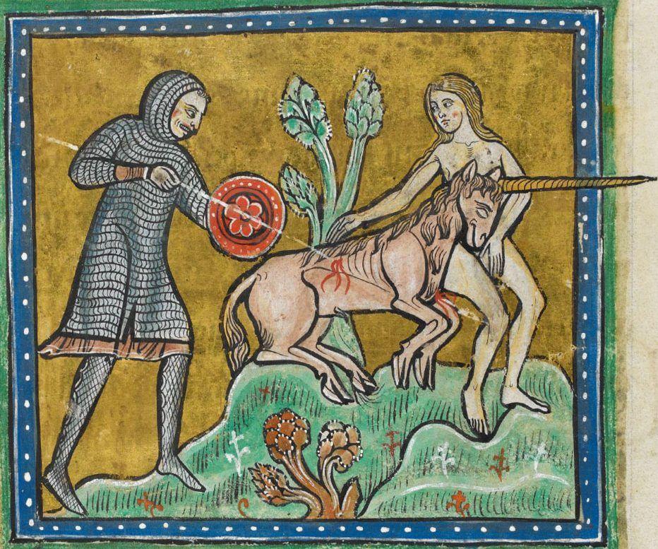 A jeśli mąż odkryje, że żona nie jest nieskalana, to reakcja może być drastyczna… Na ilustracji Jednorożec obłaskawiony przez dziewicę pada ofiarą polowania. Miniatura z Bestiariusza z Rochester (źródło: domena publiczna).