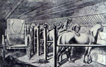 """""""W gdańskiej stajni magnata"""" autorstwa Daniela Chodowieckiego. XVIII -wieczny """"garaż"""" każdego sarmaty (źródło: domena publiczna)."""