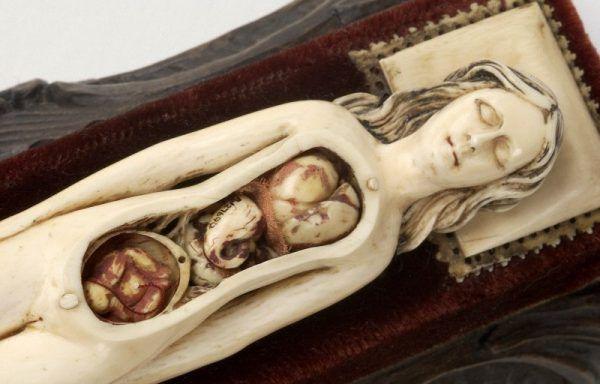 XVII-wieczny manekin z kości słoniowej przedstawiający kobietę w ciąży wraz z ruchomymi organami wewnętrznymi (fot. Wellcome Images, lic. CC BY 4.0 ).