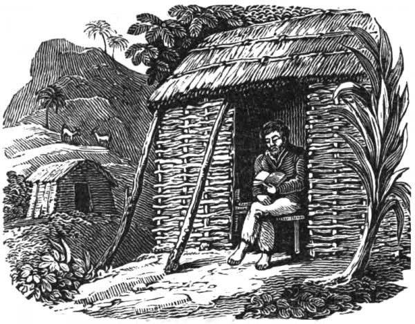Legendarny marynarz Aleksander Selkirk spędził na bezludnej wyspie prawie pięć lat. Ilustracja przedstawia szkockiego rozbitka, który czyta Biblię w zbudowanym przez siebie szałasie (źródło: domena publiczna).