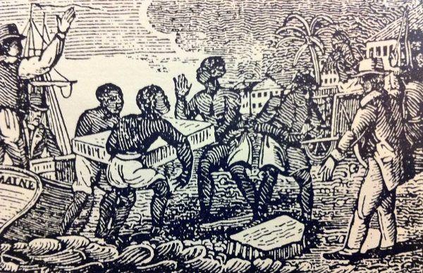 """Trucicielska działalność Mackandal sprawiła, że na wyspie zaczęło brakować rąk do pracy. Francuzi nie zamierzali puścić tego płazem """"Czarnemu Mesjaszowi"""" (źródło: domena publiczna)."""