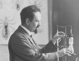 Stefan Weigl był nominowany do Nagrody Nobla aż dziewięciokrotnie! (źródło: domena publiczna).