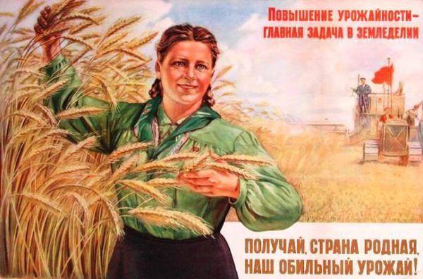 Obfity urodzaj i szczęśliwe, dobrze odżywione komsomołki - taką rzeczywistość kreowała propaganda. Radziecka wieś wyglądała zupełnie inaczej