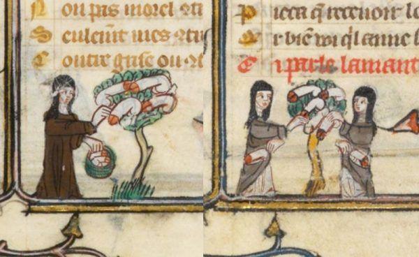 """Najlepszy sposób na nudę - sprośne obrazki? XIV-wieczna kopia """"Roman de la Rose"""" (źródło: domena publiczna)."""