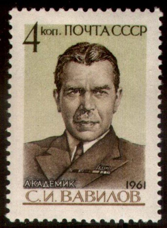 Młodszy z braci, Siergiej Wawiłow, lepiej odnajdywał się w radzieckim naukowym światku (domena publiczna).