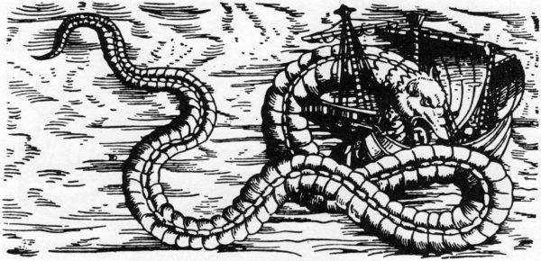 Wąż morski według szwedzkiego kartografia Olausa Magnusa, 1555 (źródło: domena publiczna).