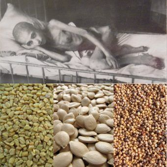 Kilka tysięcy ludzi dziennie umierało z głodu, a kilka ulic dalej naukowcy chronili olbrzymią kolekcję nasion... (zdjęcie u góry: I, George Shuklin, lic.: CC BY 2.5).