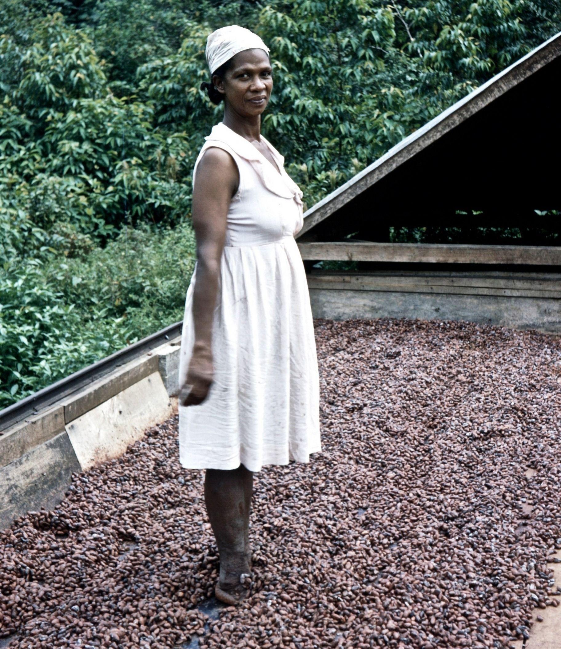 """Osoby o """"niewłaściwym"""" kolorze skóry - nawet jeśli pochodziły z Imperium Brytyjskiego - miały trudniej na Wyspach niż Europejczycy. Na tym zdjęciu z ok. 1957 roku widzimy młodą rodaczkę Odelle na ziarnach kakaowca. (fot. John Hill, lic. CC BY-SA 4.0)."""