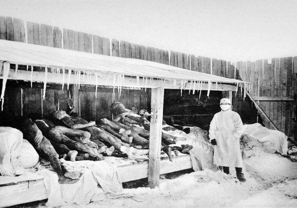 Niemal wszystkie fotografie ukazujące okrucieństwa japońskich doktorów śmierci zostały zniszczone. Nic więc dziwnego, że to zdjęcie, uwieczniające mandżurskie ofiary dżumy z przełomu 1910 i 1911, długo było przedstawiane jako składowisko ciał Jednostki 731 (źródło: domena publiczna).