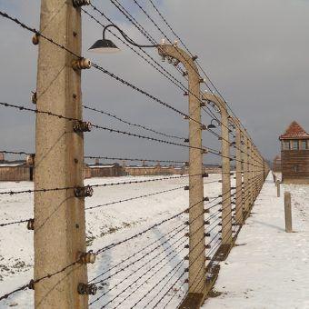 Drut kolczasty wokół KL Auschwitz-Birkenau. Zdjęcie zrobione podczas obchodów 66. rocznicy wyzwolenia obozu (fot. Piotr Drabik, flickr, CC BY 2.0.).