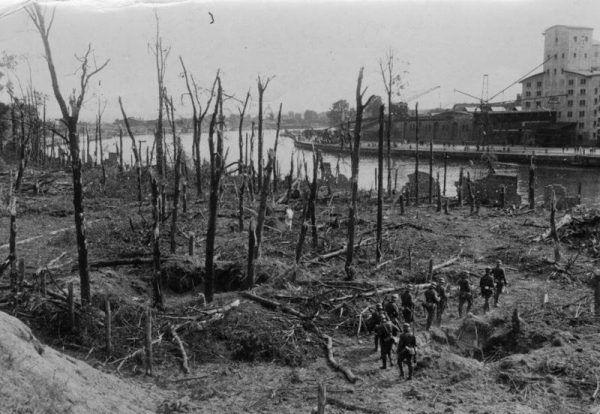 Ten las na Westerplatte wcale nie został zniszczony przez 13 szturmów (fot. Bundesarchiv, Bild 183-2008-0513-500 / CC-BY-SA 3.0).