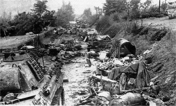 """Zniszczona niemiecka kolumna na """"psim polu"""", po bitwie o Mont Ormel (wzgórze 262)."""