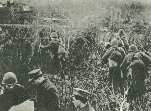 Zdjęcie wykonane przed bitwą pod Lenino, podczas której Weissenberg miał szczęście... wpaść w bagno.