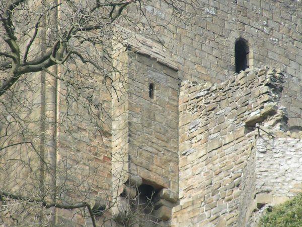 Latrynę budowano nie tylko tak, by chronić mieszkańców zamku przed zapachami i zapewniać im szybki dostęp. Dbano też o to, by nieczystości szybko opuściły zamek. Tu widzimy ustęp w angielskim Peveril.