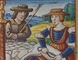 Praca przy owcach. Ilustracja z 1524 roku.