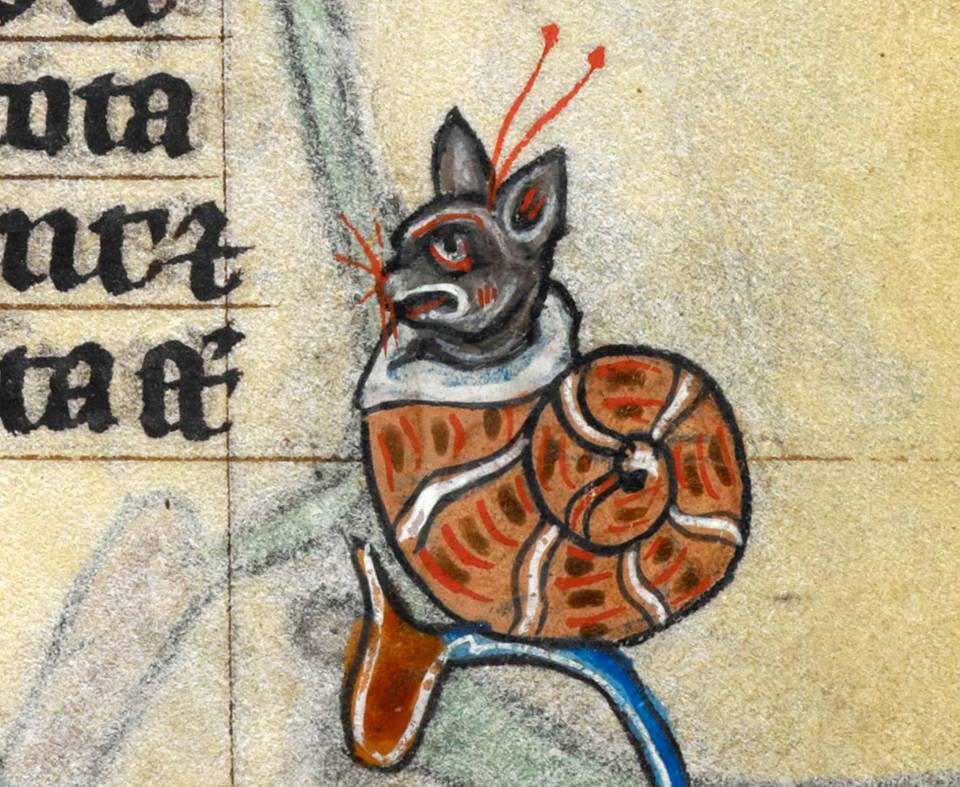 Słodziak w ślimaczej muszli. Księga godzinek z Maastricht, Holandia (Liège), XIV wiek.