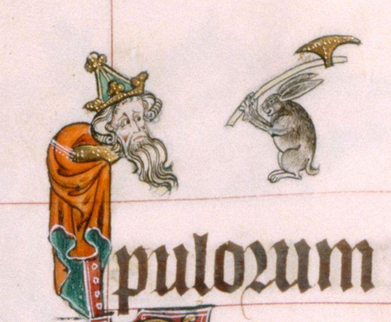 Możesz być nawet królem, przed królikiem z toporem nie ma ucieczki. Psałterz z Gorleston, ok. 1310 r.