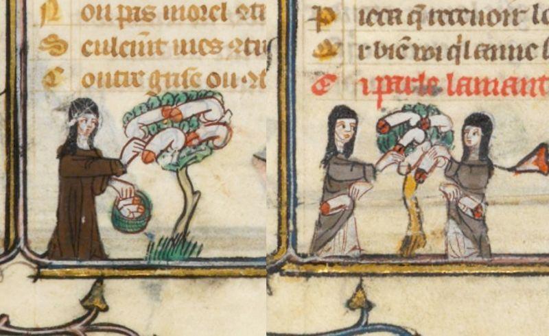 """Zastanawiałeś się kiedyś, co hodowano w średniowiecznych ogródkach? Guillaume de Lorris, Jean de Meun, """"Powieść o Róży"""", Francja, XIV wiek."""