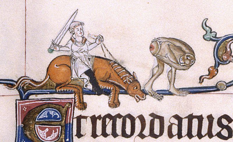 Prawdziwy rycerz niczego się nie boi, nawet małpich zadków. Psałterz z Gorleston, ok. 1310 r.