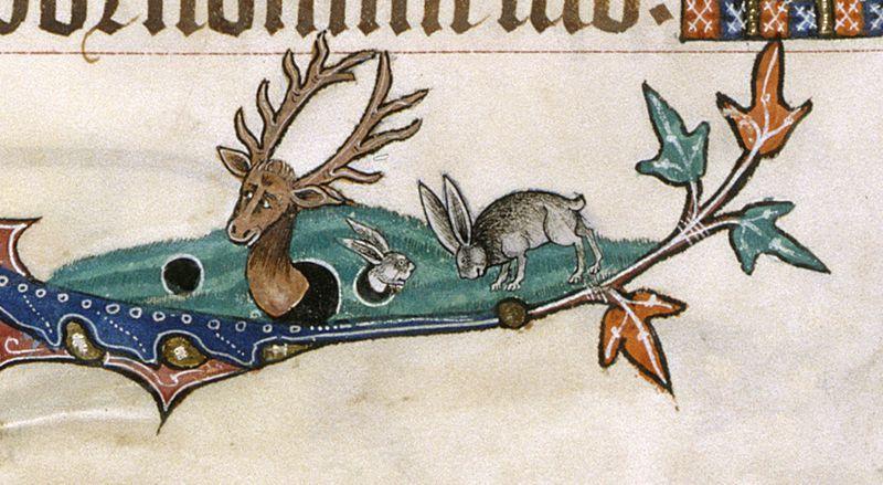 Powiedzieli, że mogę zostać kim chcę, więc zostałem królikiem. Psałterz z Gorleston, ok. 1310 r.
