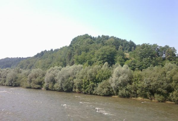 Wzgórze grodowe w Naszacowicach nad Dunajcem. Archeolodzy przypuszczają, że gród mógł pełnić rolę obozu koncentracyjnego dla piastowskich niewolników.