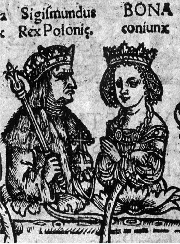 Czy brak własnego dworu świadczył o tym, że Zygmunt Stary i Bona zaniedbywali swoje dzieci?