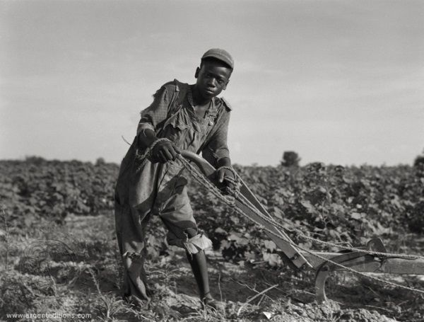 Mieszkańcy krajów pogrążonych w kryzysie nie gardzili żadnym pozywieniem. Przede wszystkim jednak chcieli móc uczciwie pracować i wykarmić swoje rodziny. (fot. domena publiczna)