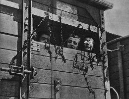 Nawet jeśli udało im się przetrwać transport do obozu Zagłady czy przeżyć obóz, wielu z nich czekała śmierć po wojnie i to z rąk współobywateli. Czy znamy dokładną liczbę Żydów, których zabili Polacy po wojnie?