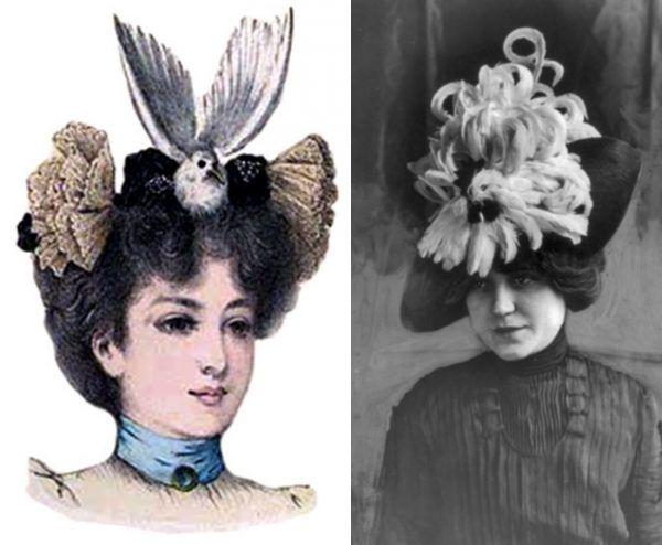"""Kapelusze z martwym ptakiem z lat 90-tych XIX wieku. To się nazywa dosłownie """"makabryczna"""" moda..."""