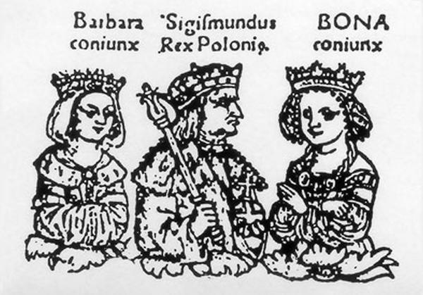 Drzewo genealogiczne Jagiellonów z 1519 roku. Z lewej strony - Barbara Zapolya.