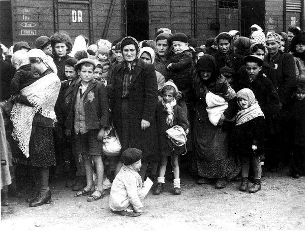 Przybywające do Auschwitz kobiety, by przeżyć, często musiały dokonywać tragicznych wyborów.