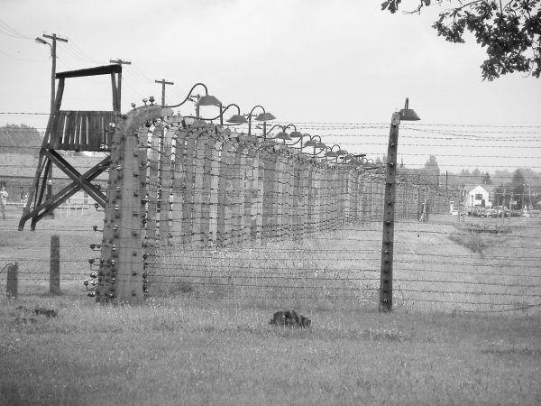 Wciąż zdarzali się śmiałkowie, którzy próbowali sforsować ogrodzenia i wydostać się na wolność. Nawet jeśli karą w przypadku schwytania było ośmieszanie, tortury i śmierć.