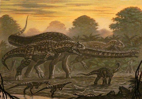 Mażungazaury w porównaniu z innymi dinozaurami wcale nie były wysokie. Dorosłe osobniki osiągały 2,5 metra wysokości.