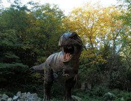 Dinozaury pojawiły się na Ziemi miliony lat temu. Dziś możemy podziwiać je jedynie w muzeach.