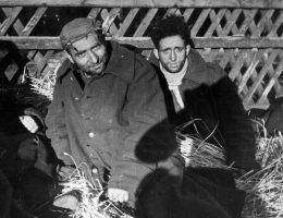 W okupowanej Polsce za ukrywanie Żydów groziła śmierć.